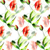Seamless pattern with colorful Poppy flowers Stock Photography
