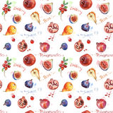 Seamless pattern. Colorful watercolor fruit. Set of fig, pomegranate, cranberry, blueberry, pear Royalty Free Stock Images