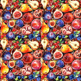 Seamless pattern. Colorful watercolor fruit. Set of fig, pomegranate, cranberry, blueberry, pear Stock Image