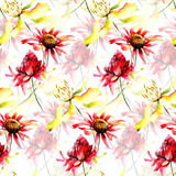 Seamless pattern with Colorful wild flowers Royalty Free Stock Image