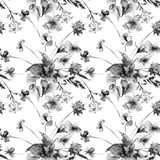 Seamless pattern with Colorful wild flowers. Watercolor illustration Royalty Free Stock Photos