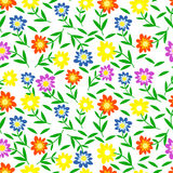 Seamless,pattern colorul flower Stock Photos