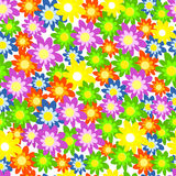 Seamless,pattern colorul flower Stock Image