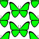Seamless pattern. Colourful utterfly on white background stock illustration