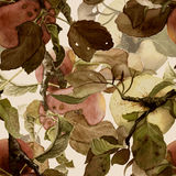Seamless pattern composed of apples. Seamless pattern composed of watercolor alpples with leaves, hand drawn Royalty Free Stock Image