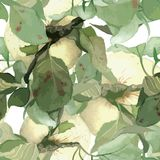 Seamless pattern composed of white watercolor Royalty Free Stock Photo