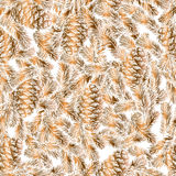 Seamless pattern of cones and fir branches Royalty Free Stock Photography