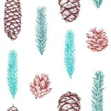 Seamless pattern with cones. And branches of Christmas tree. Fir tree, cedar, pine. Hand drawn sketch. Vector illustration Stock Photos