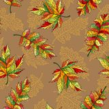 Seamless illustration with contour lacy autumn leaves of different trees on a beige background. Seamless pattern with contour lacy autumn leaves of different Royalty Free Stock Photos