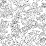 Seamless Pattern with Corals Stock Photos