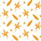 Seamless pattern with corn. Stock Photography