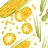 Seamless pattern. Corn with leaves. Corn cob with separated seeds. Flat vector illustration on white background