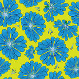 Seamless pattern  cornflower flowers Stock Image