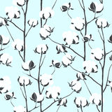 Seamless pattern with cotton branches. Vector vintage background Stock Image