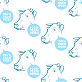 Seamless Pattern with cow Royalty Free Stock Images