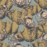 Seamless pattern with crabs and shells Stock Photography