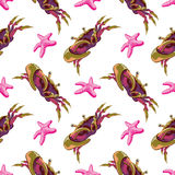 Seamless pattern with crabs and starfish. Vector  illustration Stock Photography