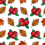 Seamless pattern with cranberries. Colorful sketch seamless pattern with cranberries and leaves. Vector Stock Images