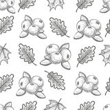 Seamless pattern with cranberries and leaves. Monochrome sketch seamless pattern with cranberries and leaves. Vector Royalty Free Stock Photography