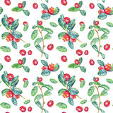 Seamless pattern with cranberry. Drawing with colored pencils. Royalty Free Stock Photos
