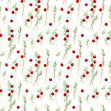 Seamless pattern of a cranberry. Forest berry.Watercolor hand drawn illustration.White background Royalty Free Stock Photography
