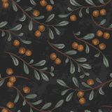 Seamless pattern with cranberry plant on black grunge background. Vintage vector illustration in watercolor style Stock Photos