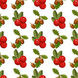 Seamless pattern with cranberry. Seamless pattern with cranberry red berry food natural organic texture. Drawing with colored pencils. Gift wrapping cranberry Royalty Free Stock Photography