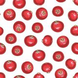 Seamless Pattern with Cranberry. On a White Background royalty free illustration