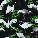 Seamless pattern with cranes and leaves of palm trees stock illustration