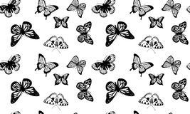 Seamless pattern created from hand sketched butterflies royalty free illustration