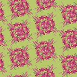 Seamless pattern from crimson flower. Seamless pattern with bouquets of crimson and pink lily on yellow-green background Stock Photography