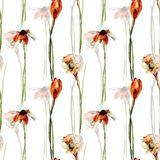 Seamless pattern with crocus, gerber and narcissus flowers Stock Image