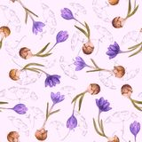 Seamless floral pattern with crocus Royalty Free Stock Image