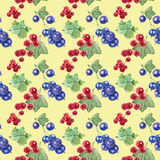 Seamless pattern of currant and gooseberry Royalty Free Stock Photography