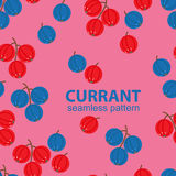 Seamless pattern of currants Royalty Free Stock Photos