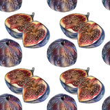 Seamless pattern with cut blue figs drawn by hand with colored pencil Royalty Free Stock Images