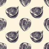 Seamless pattern with cut figs drawn by hand with pencil Stock Image