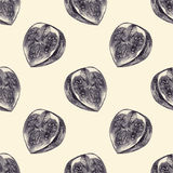 Seamless pattern with cut figs drawn by hand with pencil Royalty Free Stock Photography