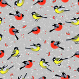 Seamless pattern with cute birds bullfinches and tits in winter Stock Photo