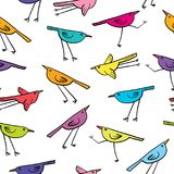 Seamless pattern with cute birds on white background. Stock Image