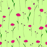 Seamless pattern with cute bright pink flowers. Green background Stock Photography