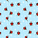 Seamless pattern with cute bullfinches Royalty Free Stock Images