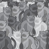 Seamless pattern of cute cartoon cats.  illustration Royalty Free Stock Images