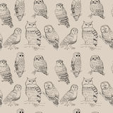 Seamless pattern with cute cartoon owls strokes Royalty Free Stock Photography