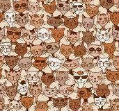 Seamless pattern of cute cats Royalty Free Stock Photos