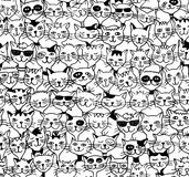 Seamless pattern of cute cats Stock Images