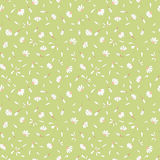 Seamless pattern with cute chamomile flowers on light green background Stock Image