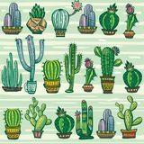 Seamless pattern with cute cactuses Stock Image