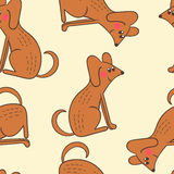 Seamless pattern of cute dogs. Stock Images