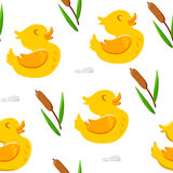 Seamless pattern with cute duck and reeds. Ornament for children`s textiles and wrapping. Vector background Stock Images